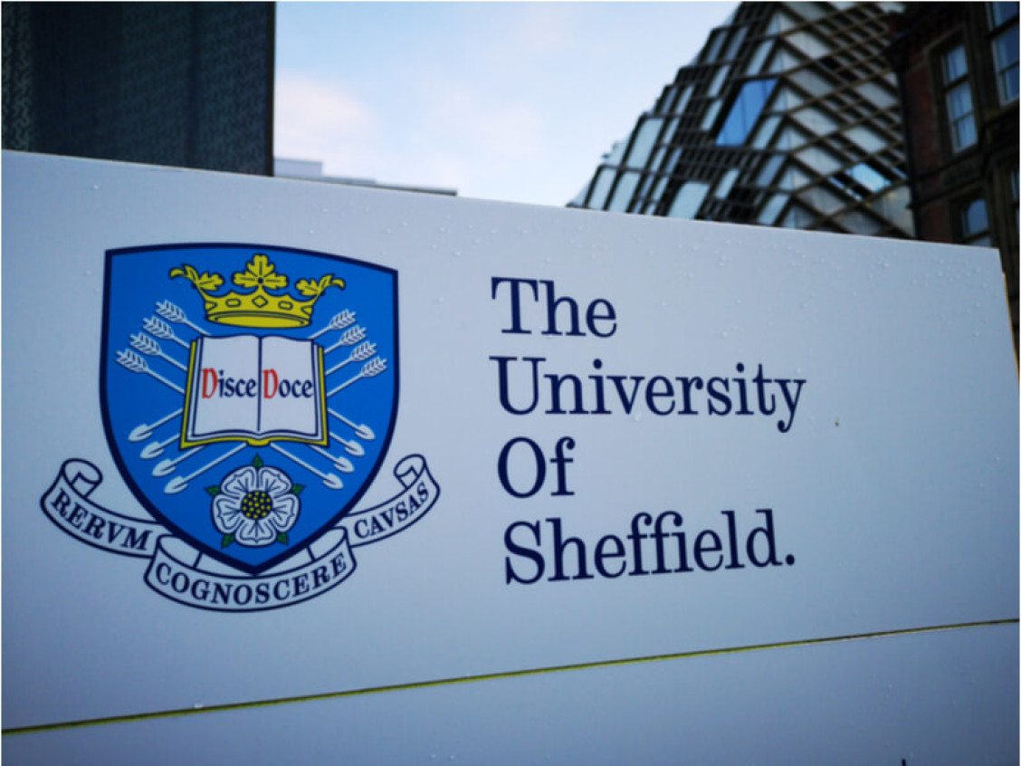 Will attends the University Of Sheffield